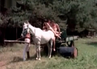 Farm horse fucked in the anal