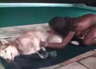 Husky gets blown by an Ebony