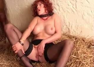 Close up animal porn scene