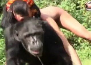 Exotic animal sex with a gorilla